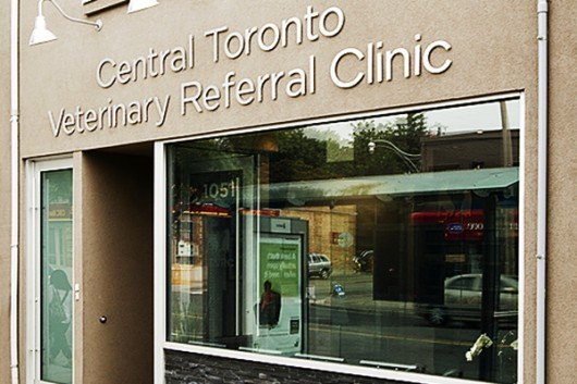 Street-view of the Central Toronto Veterinary Referral Clinic in Toronto